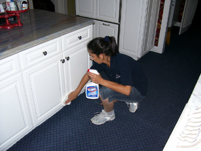 House Cleaning Services Boston 5